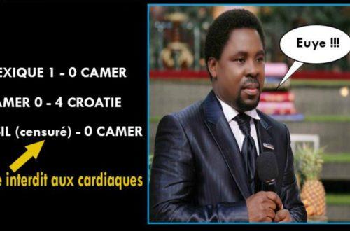 Article : Cameroun : quand le web s'amuse du mauvais Mondial des Lions indomptables