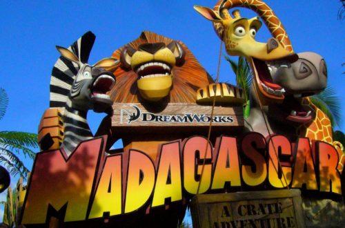 Article : Top 5 : comment suivre le Mondial à Madagascar