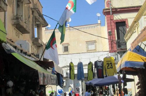 Article : ALGÉRIE – Les Fennecs, sur le terrain et devant la télé, sont fin prêts !