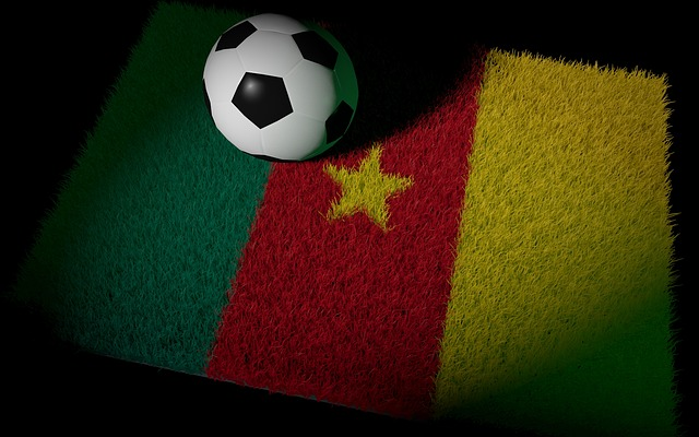 Le Cameroun aimerait bien réaliser ce qu'aucune équipe africaine n'est parvenue à faire jusque-là : atteindre les demi-finales d'un Mondial (Crédit photo : DasWortgewand, Pixabay)