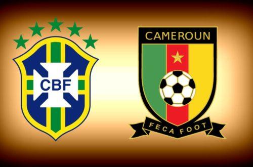Article : Brésil-Cameroun : «Les Lions indomptables ne forment plus une équipe»