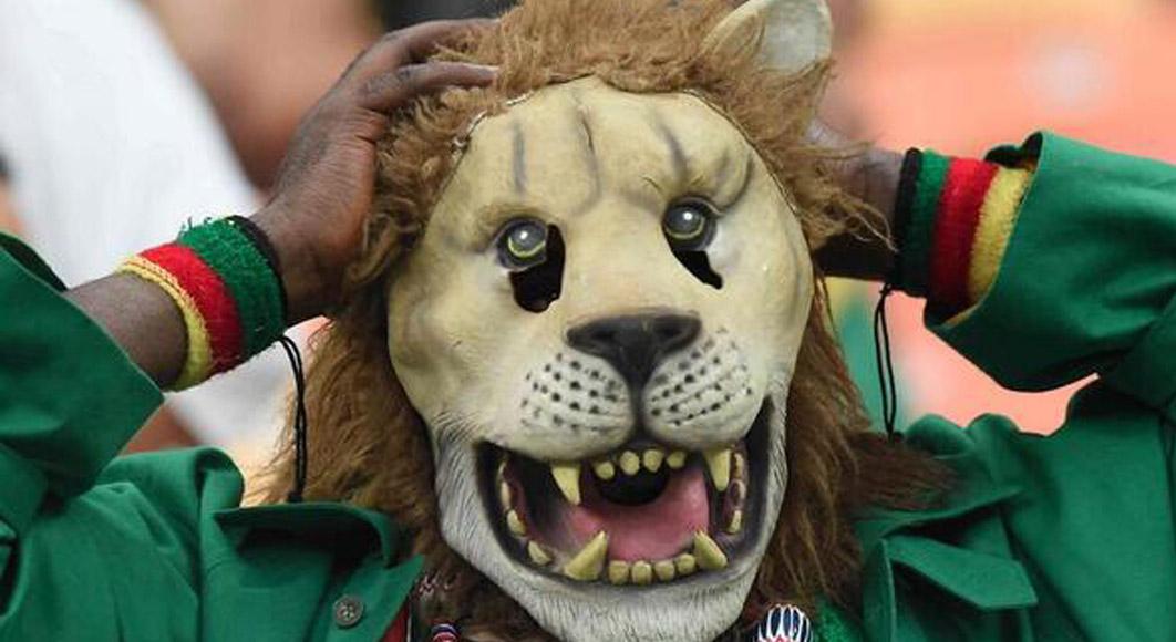 lione-cameroun
