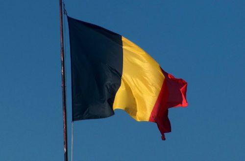 Article : Belgique : les Diables revenus la tête basse au pays